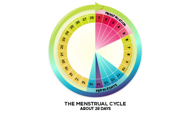 Menstruation is the technical term for getting your period. About once a  month, females who have gone through puberty will experience menstrual  bleeding.